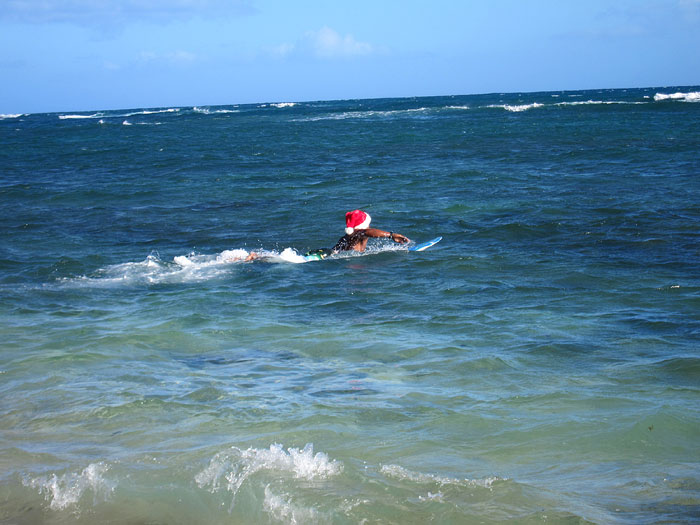 ho ho ho... surf's up rudolf!