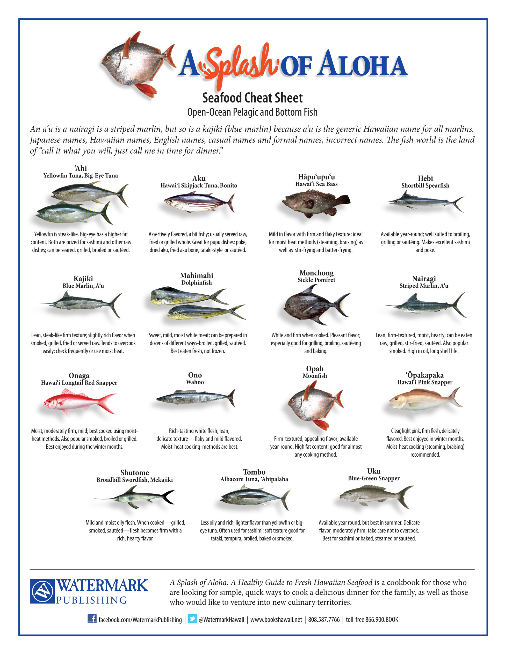 Japanese fish name gallery for Fishing team names
