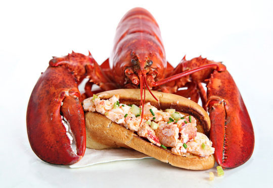 Lobster Rolls 103: Connecticut, New England and Maine Style – Tasty ...